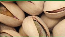 Edible Nuts - Pistachio