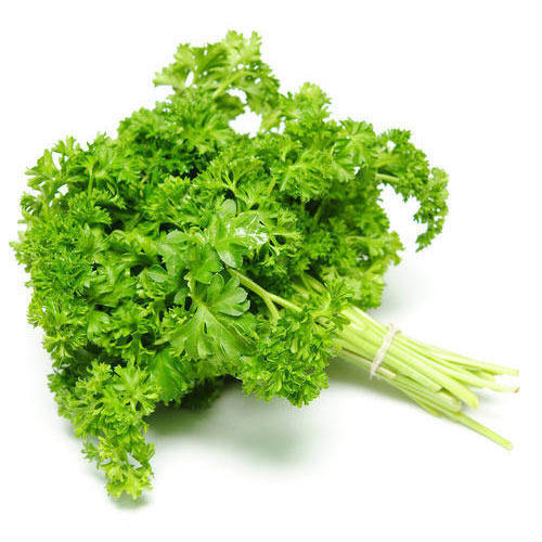 fresh parsley at rs 300 kilogram achu mooda leaves achu mooda