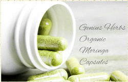 Pure Organic Certified Moringa Capsules-380mg