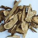 Kutki Costus Root Oil