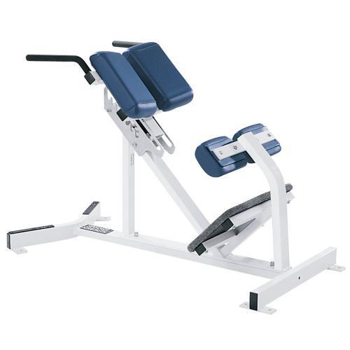 Lower Back Extension Machine For Gym Rs 28000 Piece Sharp