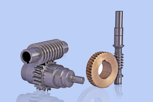 Stainless Steel Worm Gears