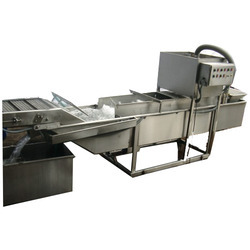 Continuous Type Fruit and Vegetable Washer, 5 Ton