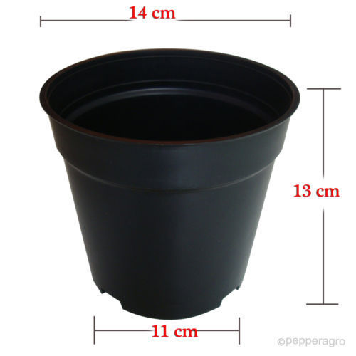 10 Qty 5 Inch Nursery Flower Pot At Rs