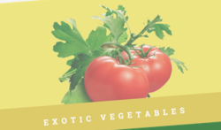 Exotic Vegetable