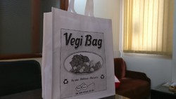 Non Woven Printed Veg Bag, Bag Size: 18*15*7
