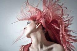 Hair Fall Alopecia Baldness Hair Problems Dandruff Premature