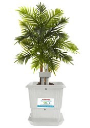 Plantina Self Watering Garden Pot