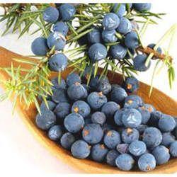Juniperus Floral Water