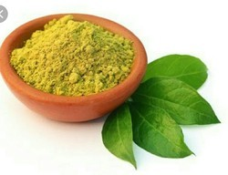 Green Henna Powder, Packaging Size: 20 kg, Packaging Type: Cotton Gunny Bag