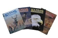 Magazines Publication Services
