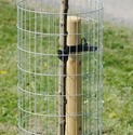 Tree Guard Weld Mesh