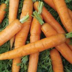 Baby Carrot, Packaging: Plastic or Polythene Bag