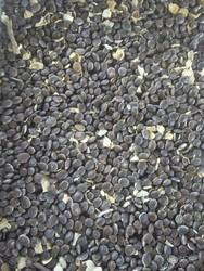 Babool Seeds, Pack Size: 50kg
