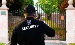 Amusement Park Security Service