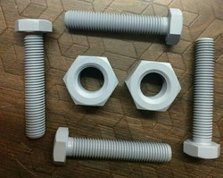 Gray Xylan Coating Services on Nut Bolts