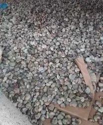 Raw cashews nuts sell