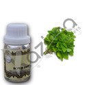 KAZIMA Lemon Balm Essential Oil - 100% Pure, Natural & Undiluted