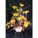 Zerbera Plant Arrangement Bouquet