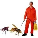 Hospitality Pest Mg Mt Services