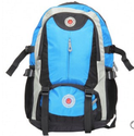 Designer Travel Backpack