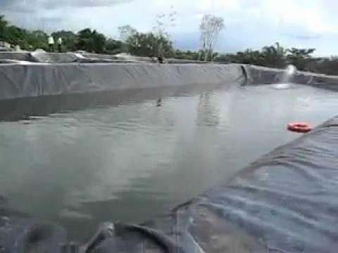 Hdpe Pond Liner Manufacturer From Ahmedabad