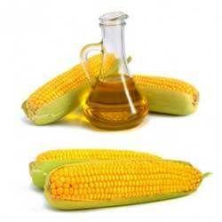 Maize Corn Oil