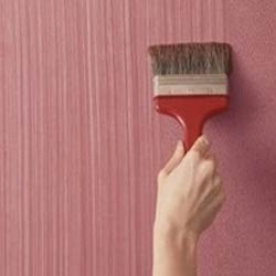 Texture Painting Service , home texture painting in India