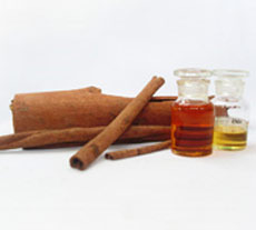 Cinnamon Bark Oil (50%, 60%, 70%)