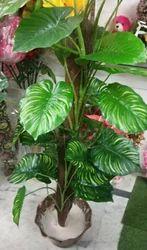 Hyperboles Artificial Tree Money Plant