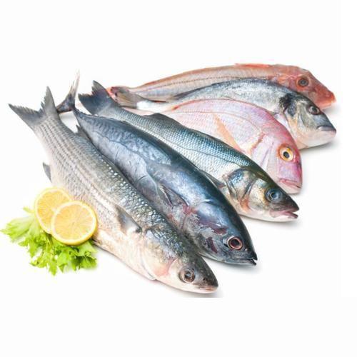 Seafood - Wholesale Price & Mandi Rate for Seafood