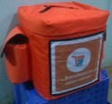 Insulated Food Delivery Bags ( With Branding )
