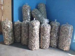 Dry Oyster Mushroom, Packaging: Carton ,No Preservatives