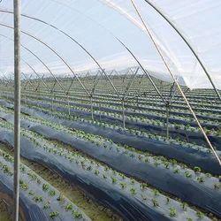 Irrigation Mulching Films
