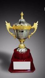 Metal Award Cup