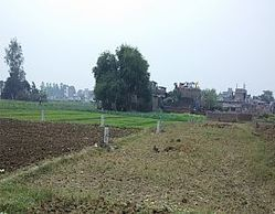 Land In Patna, Size/ Area: Deepend On Service