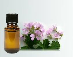 Skin Care Essential Oils