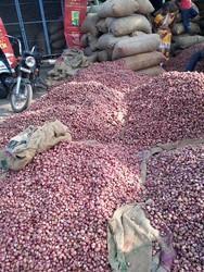 Onions Shallots Sambar Onions