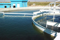 Raw Water Testing Services