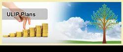 ULIP Plans (Unit Linked Insurance)