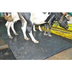 Cow Mat In Pune Gay Ke Liye Chatai Dealers Amp Suppliers In