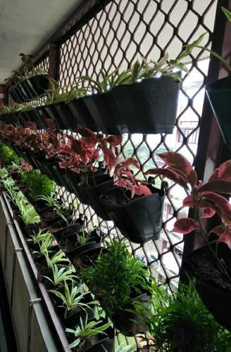 Black Strong Square Vertical Garden Pots For Indoor Outdoor Size 5inch Rs 9 Nos Id 20308058755