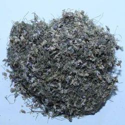 未加工的wherb天然gul e Banafsha Viola odorata,包装类型:原始,鲜花和茎
