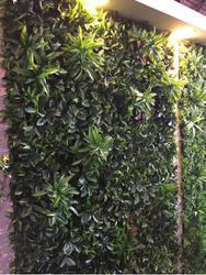Multicolor Synthetic Artificial Green Wall, Size: 16x24 Inch