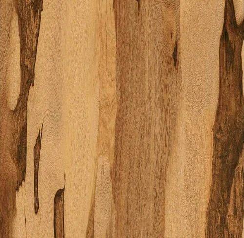 Kajaria Wooden Floor Tile