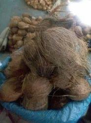 Malai Coconut