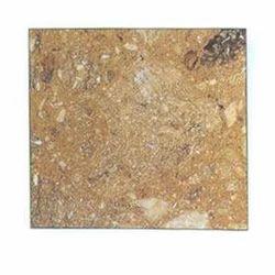 Rasotica Marble
