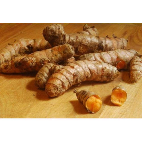 natural-turmeric-roots-500x500.jpg