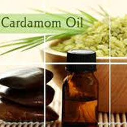 Cardamom Oleoresins 10%
