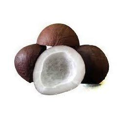 Dried Coconut in Hyderabad - Latest Price & Mandi Rates from